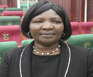 Ms C. Zvobgo  Work Related emily ganga
