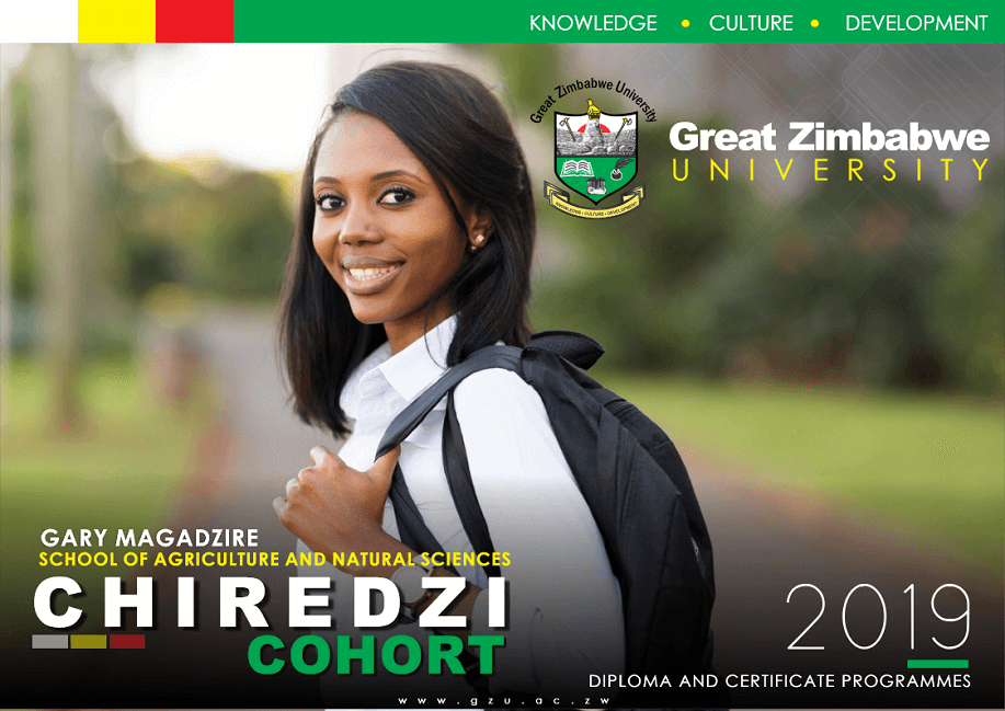 [object object] Great Zimbabwe University Homepage gzu chir cohort 2