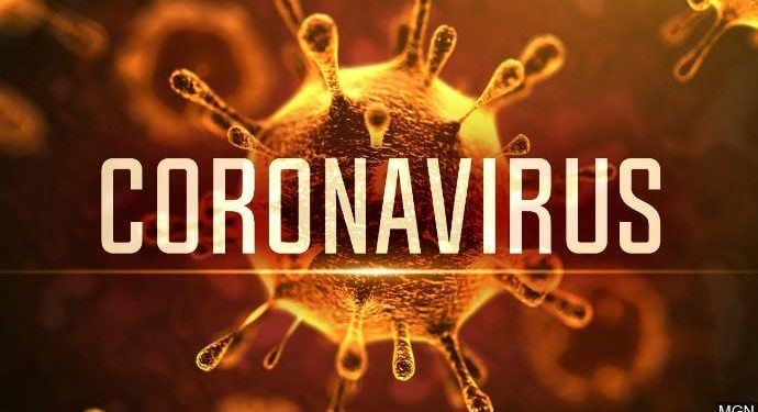 Covid 19 Response Update Coronavirus5 690x375 [object object] Great Zimbabwe University Homepage Coronavirus5 690x375